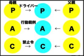 プロセス脚本